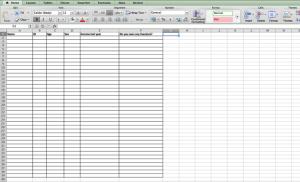 Data entry-spreadsheet